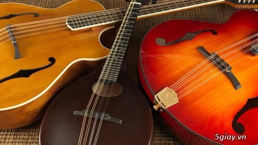 bán đàn mandolin giá rẻ tại cửa hàng nhạc cụ mới Bình Dương - 31