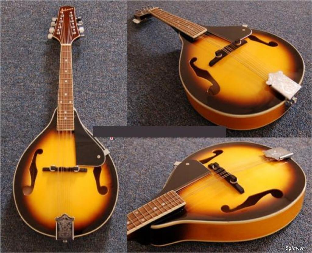 bán đàn mandolin giá rẻ tại cửa hàng nhạc cụ mới Bình Dương - 13
