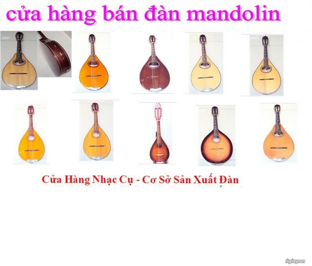 bán đàn mandolin giá rẻ tại cửa hàng nhạc cụ mới Bình Dương - 8