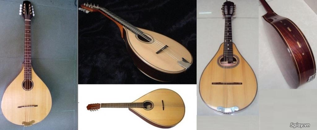 bán đàn mandolin giá rẻ tại cửa hàng nhạc cụ mới Bình Dương - 6