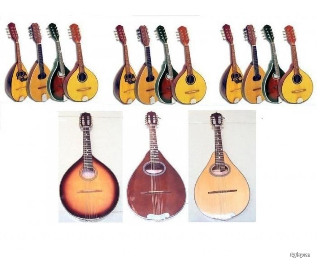 bán đàn mandolin giá rẻ tại cửa hàng nhạc cụ mới Bình Dương - 4