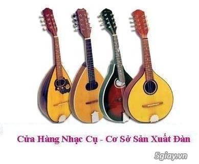 bán đàn mandolin giá rẻ tại cửa hàng nhạc cụ mới Bình Dương - 30