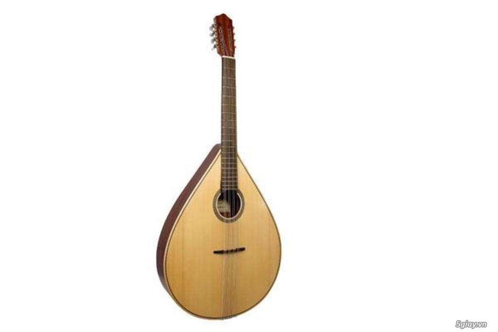 bán đàn mandolin giá rẻ tại cửa hàng nhạc cụ mới Bình Dương - 19
