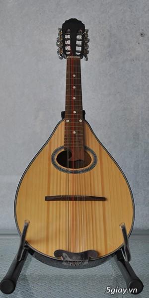 bán đàn mandolin giá rẻ tại cửa hàng nhạc cụ mới Bình Dương - 25