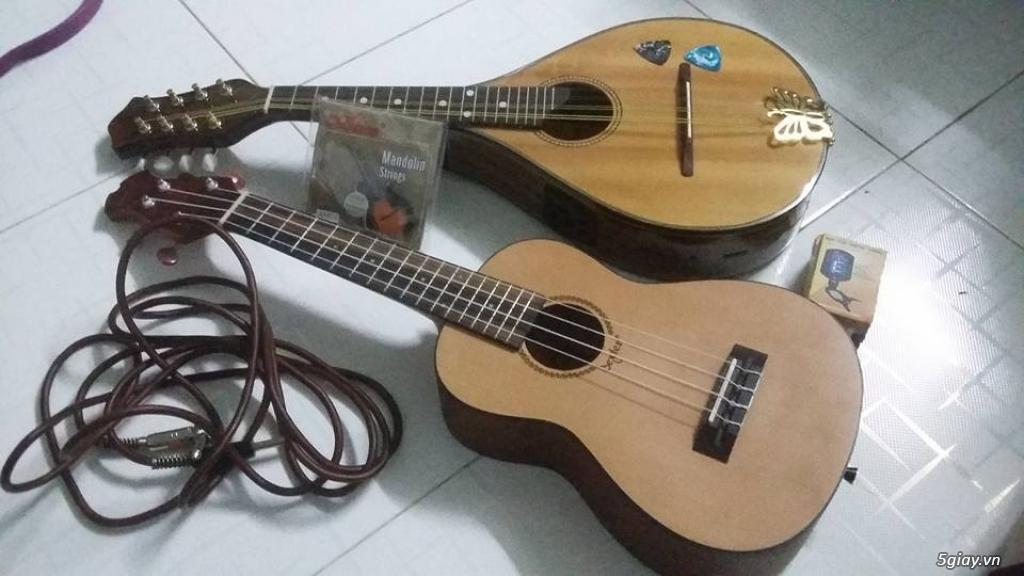 bán đàn mandolin giá rẻ tại cửa hàng nhạc cụ mới Bình Dương - 36