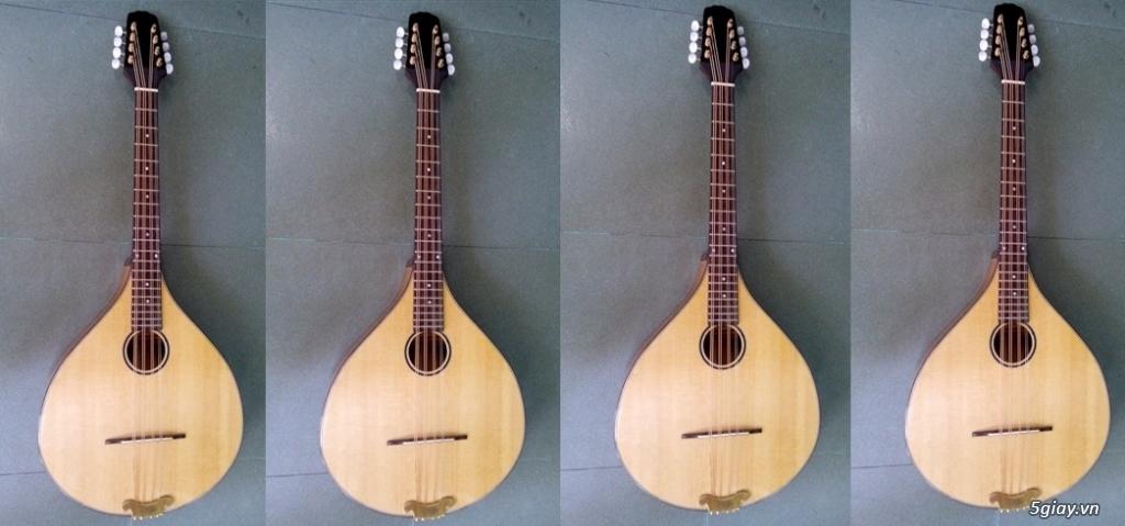 bán đàn mandolin giá rẻ tại cửa hàng nhạc cụ mới Bình Dương - 12