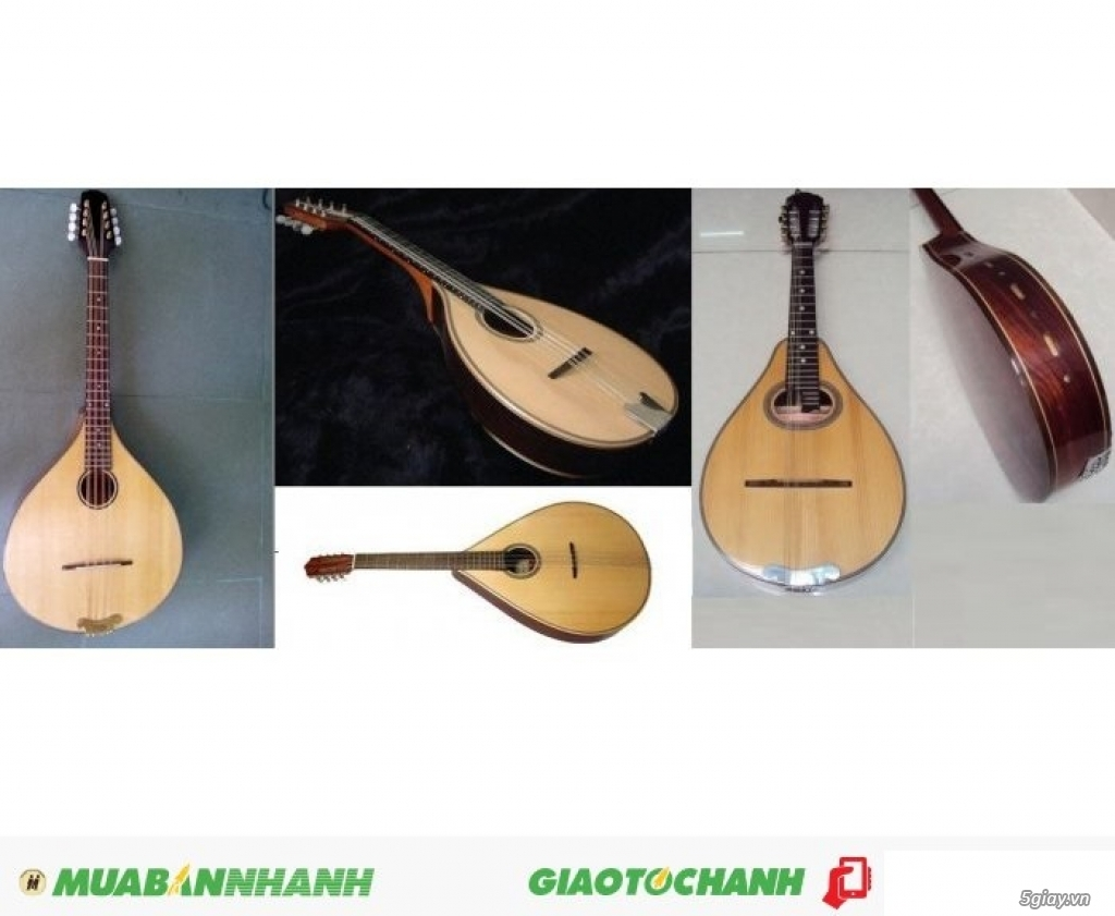 bán đàn mandolin giá rẻ tại cửa hàng nhạc cụ mới Bình Dương - 43