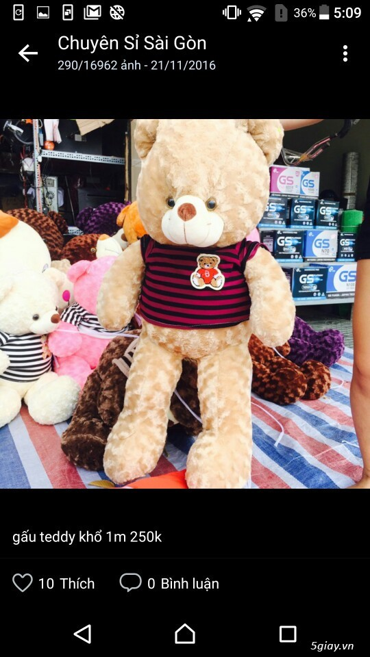 Gấu bông bansisaigon giá sỉ chuyên cung cấp gấu bông, thú bông giá sỉ - 18