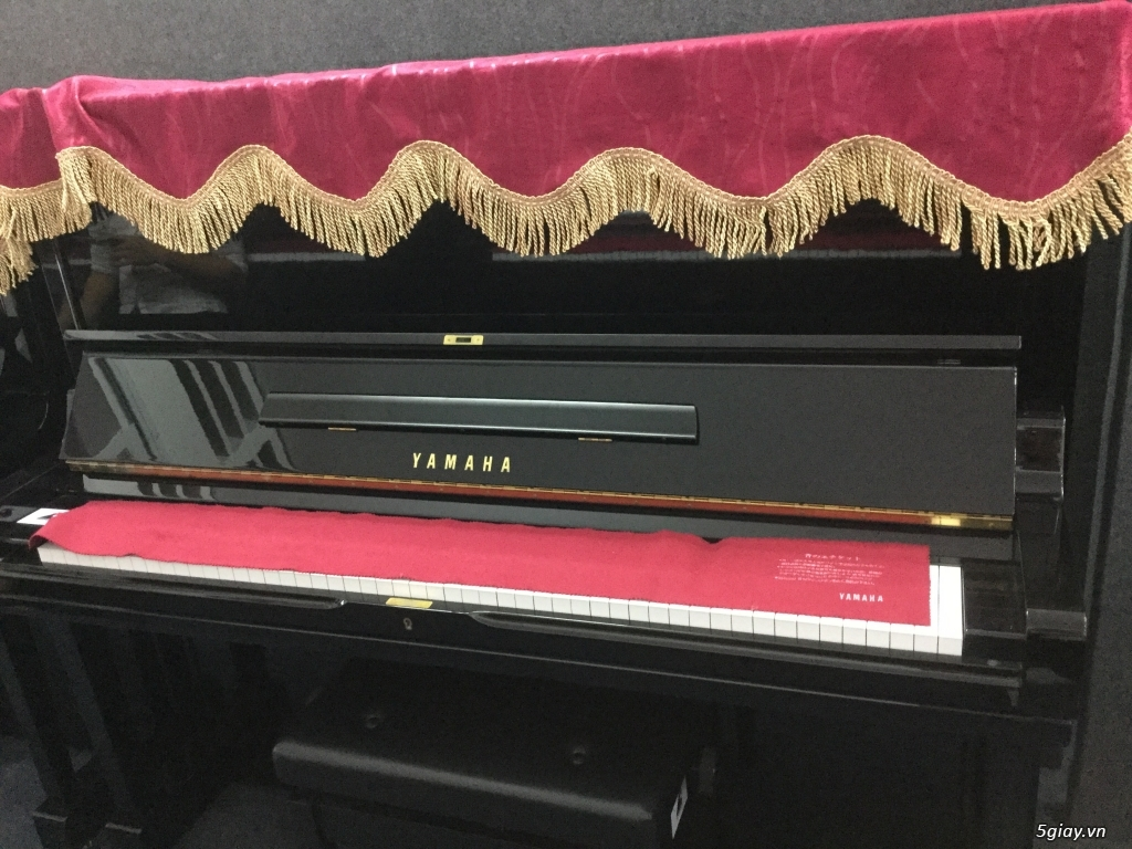 Đàn piano cơ giá rẻ tại hồ chí minh - 2