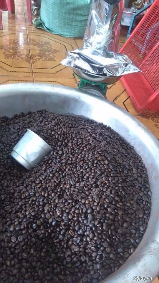 Cung cấp sỉ, lẻ cà phê nguyên chất - Krongpak - Robusta, Arabica...