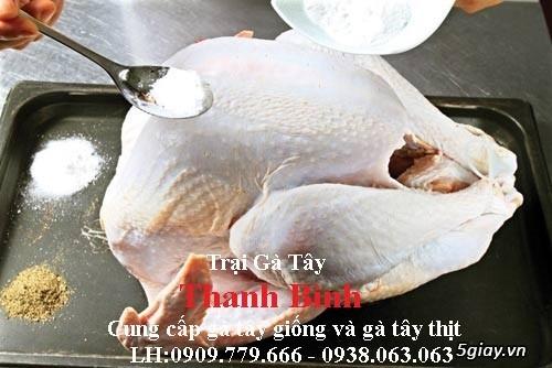 Trại gà tây(gà lôi) giống Thanh Bình.Chuyên cung cấp con giống LH:0909.779.666 - 16