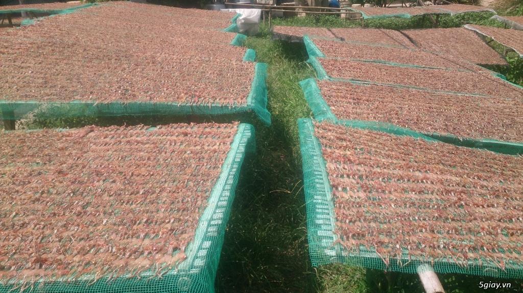 Tổng hợp đặc sản khô cá miền Tây sạch, ngon cho gia đình và đối tác - 1
