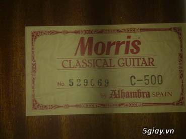 Guitar Tây Ban Nha - 38
