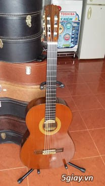 Guitar Kurosawa sản xuất tại Nhật - 25