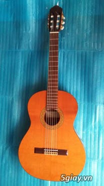 Guitar Tây Ban Nha - 31