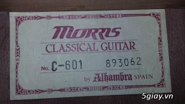 Guitar Tây Ban Nha - 40
