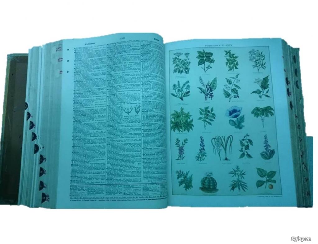 Bán từ điển Webster's nặng 5kg - 1,5 triệu - 3