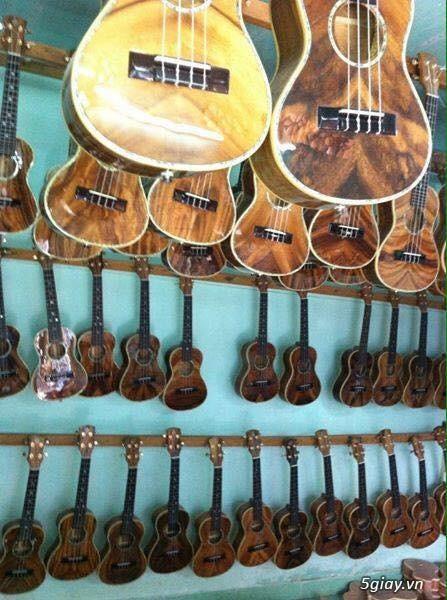 Bán Đàn Guitar, Đàn Tranh, giá rẻ tại cửa hàng nhạc cụ mới HÓC MÔN - 26