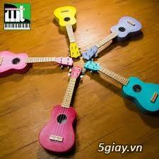 Bán đàn ukulele giá siêu rẻ toàn quốc - 3