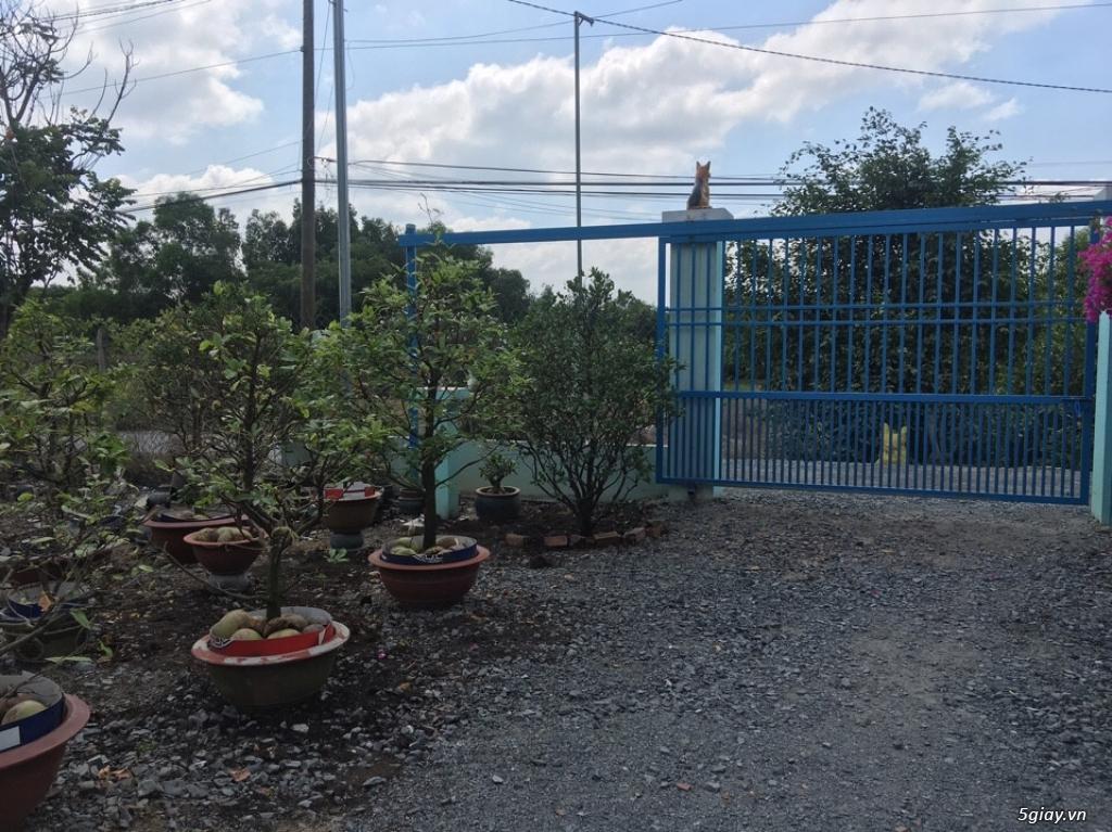 Bán Gấp Nhà Mặt Tiền Đường Lớn Vĩnh Phú 32(Hướng Chính Nam) DT 411,4 M - 8
