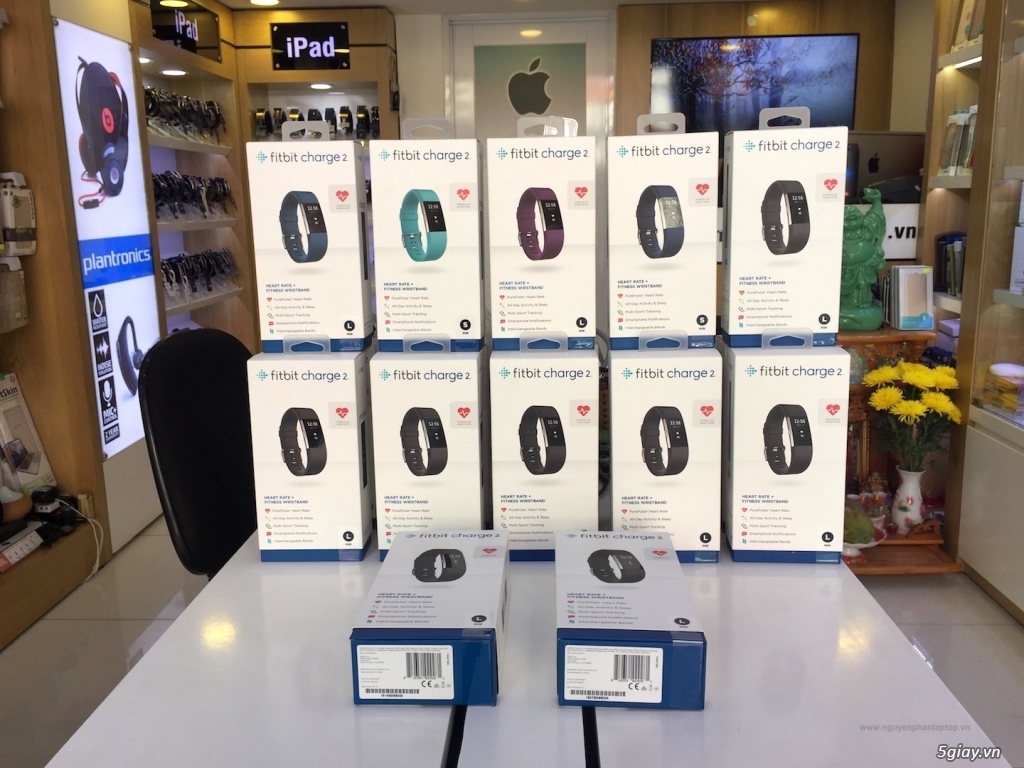 Chuyên Apple Watch | Fitbit giá tốt. ALTA: 1.550k, ALTA HR, CHARGE 2, VERSA, IONIC. Phụ kiện Fitbit - 17