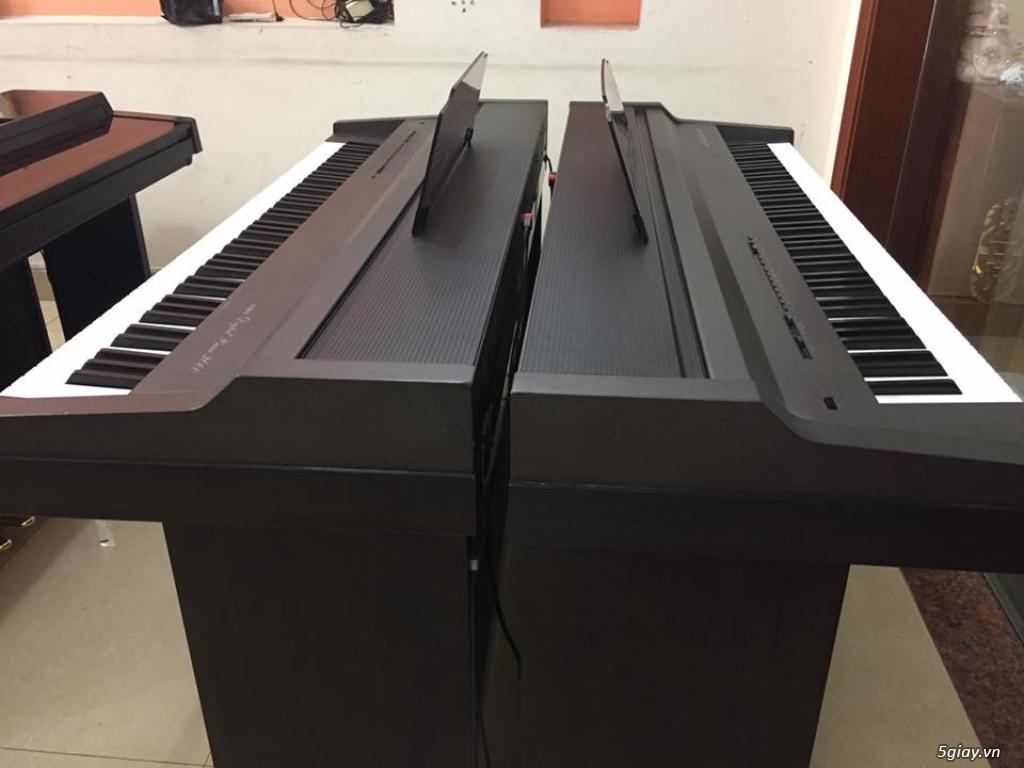 musicstar.com.vn_ Chuyên bán nhạc cụ: Piano, Organ, Guitar, Đàn tranh - 3