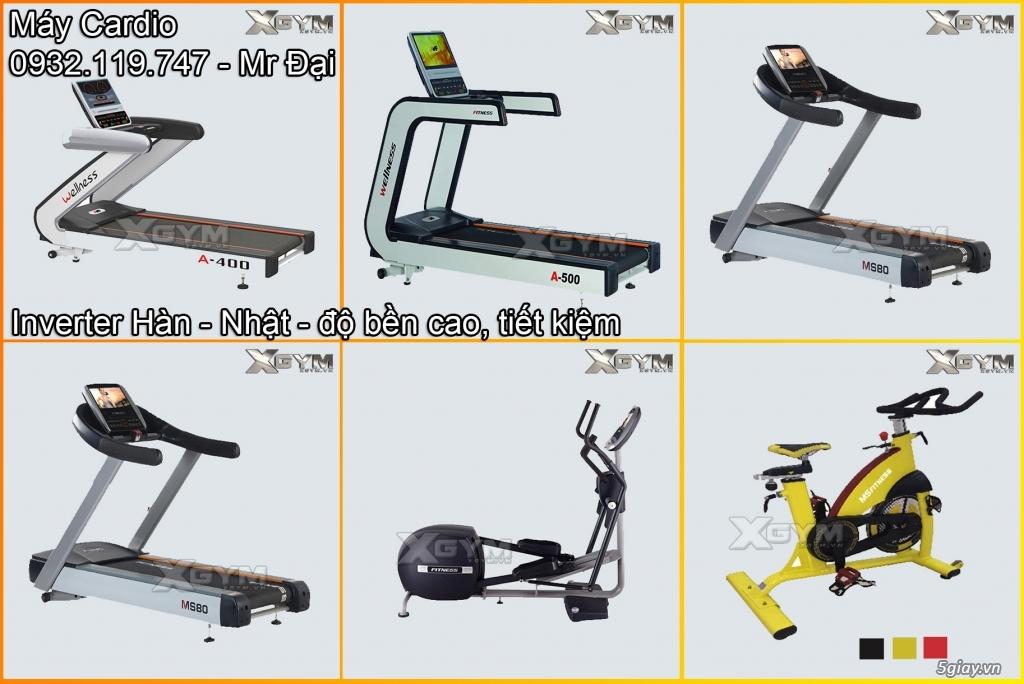 Setup - Phân phối thiết bị phòng Gym - 4