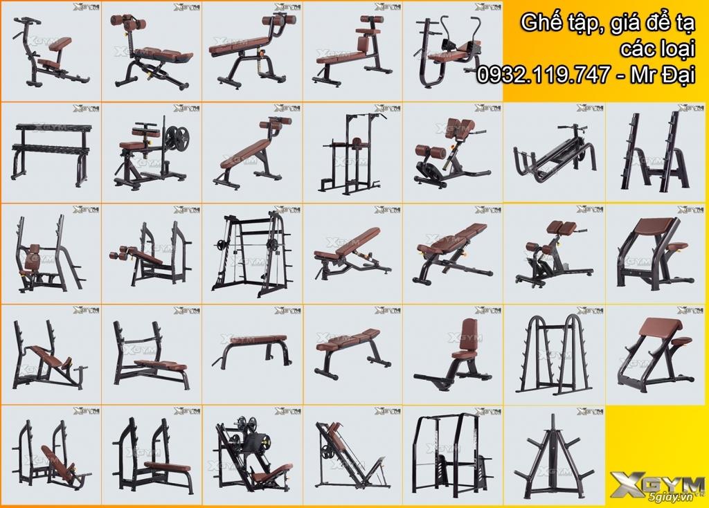 Setup - Phân phối thiết bị phòng Gym - 2