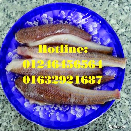 Cung cấp chả cá bán bánh mì (chả cá mối Vũng Tàu) và xe bánh mì chả cá - 3