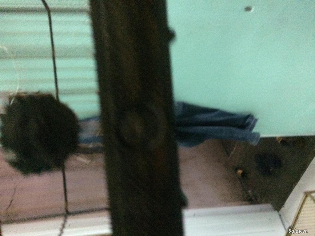 Thanh lý lồng Vuông 17 nan và lồng lực bằng tre giá rẻ - 7