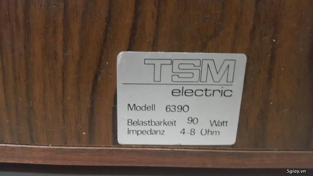 Loa TSM 6390