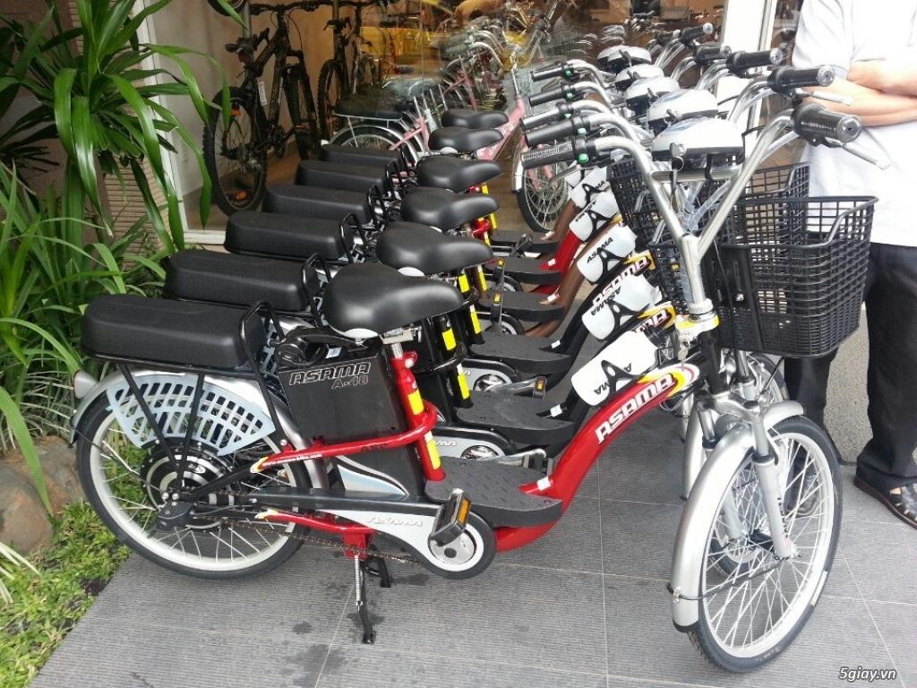 Bán xe đạp điện cũ các loại giá rẻ nhất TPHCM - 1