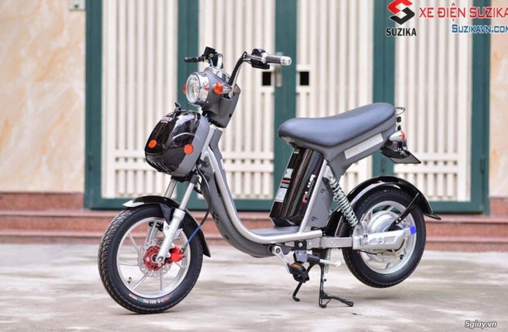 Bán xe đạp điện cũ các loại giá rẻ nhất TPHCM - 4