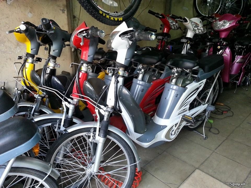 Bán xe đạp điện cũ các loại giá rẻ nhất TPHCM - 3