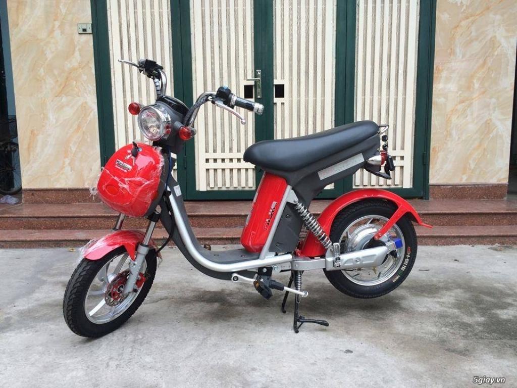 Bán xe đạp điện cũ các loại giá rẻ nhất TPHCM - 6