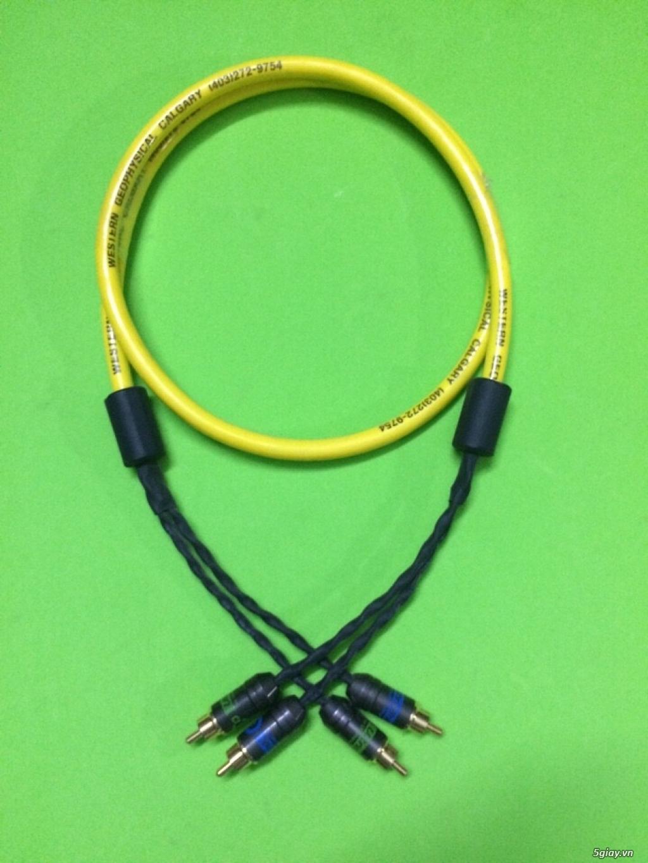 Dây Audio DIY và dây bãi chọn lọc. - 35