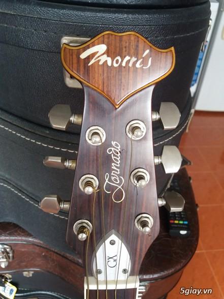 Acpoustic guitar Morris và Yamaha sản xuất tại Nhật - 5