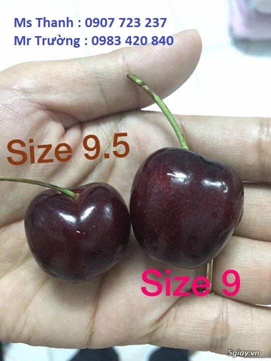 Cherry Nhap khau