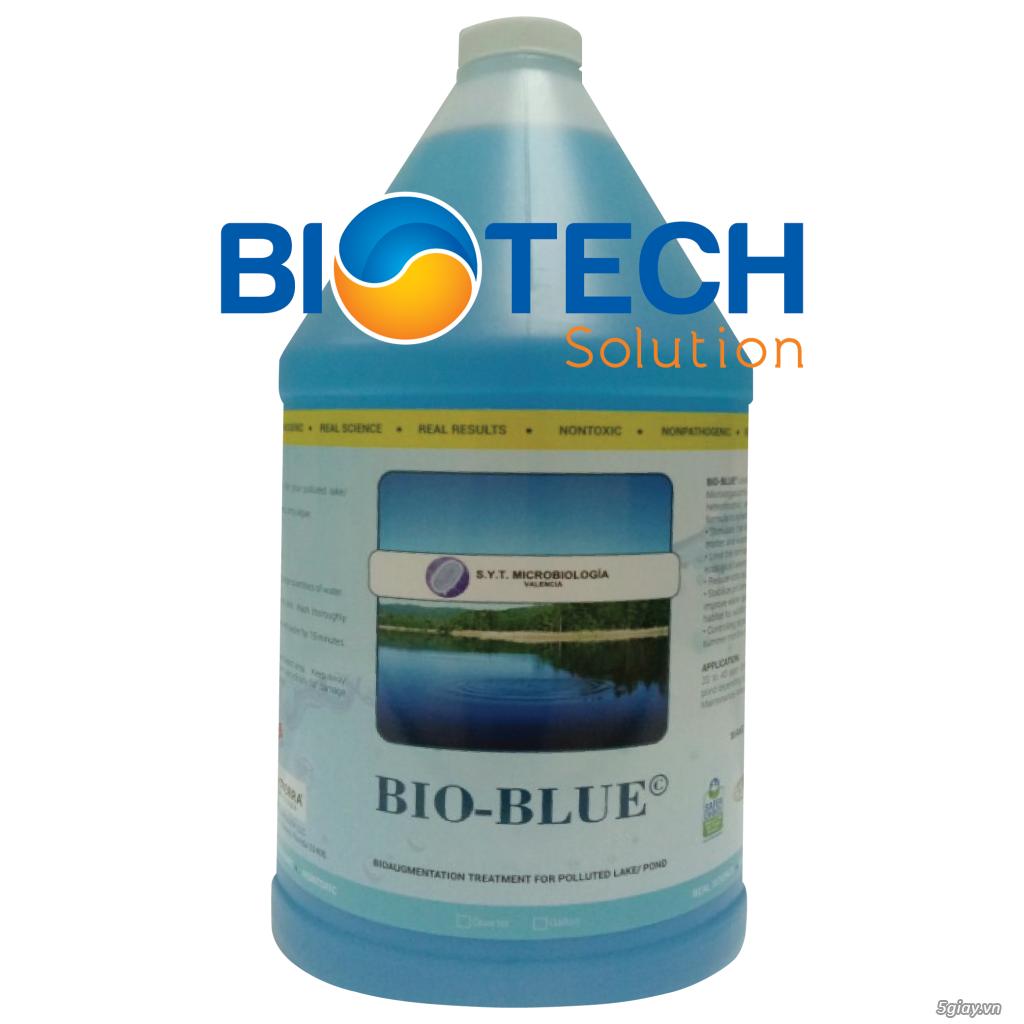 Vi sinh xử lý ao hồ cảnh quan bị ô nhiễm rong tảo – BIO BLUE