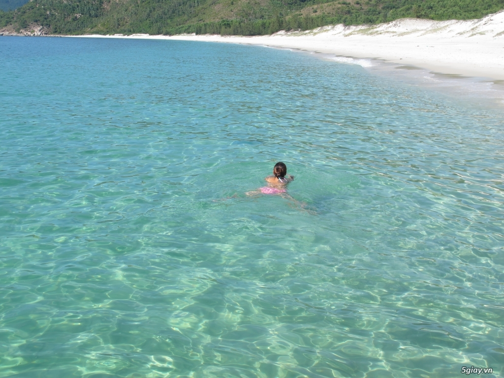 Villa Đảo Hoa Vàng và các tour lặn san hô ở Bình Lập - 15