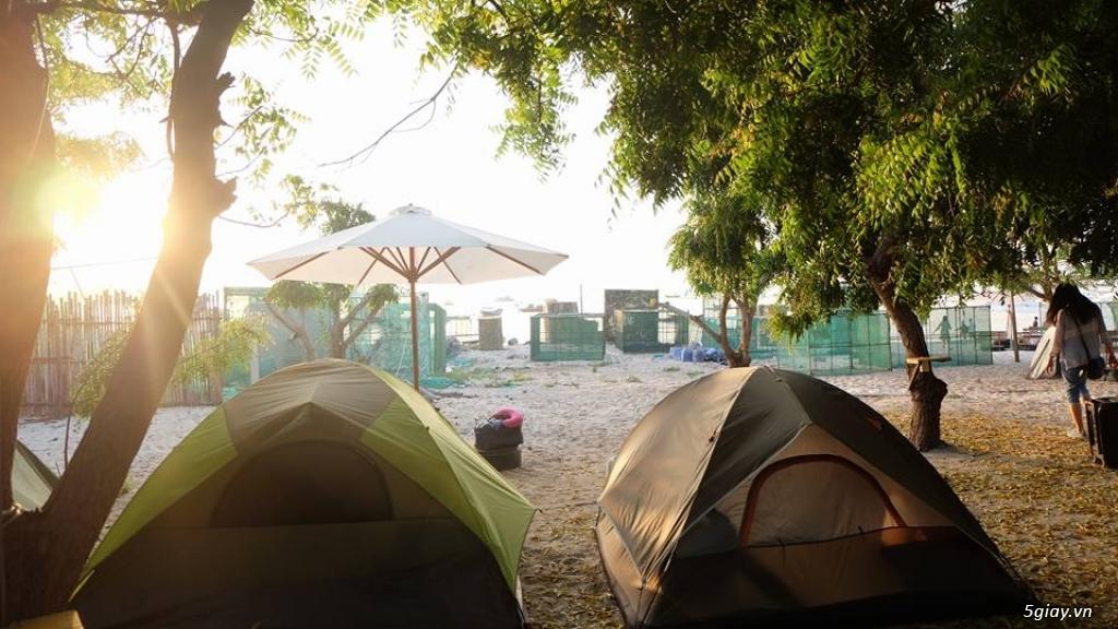 Villa Đảo Hoa Vàng và các tour lặn san hô ở Bình Lập - 6