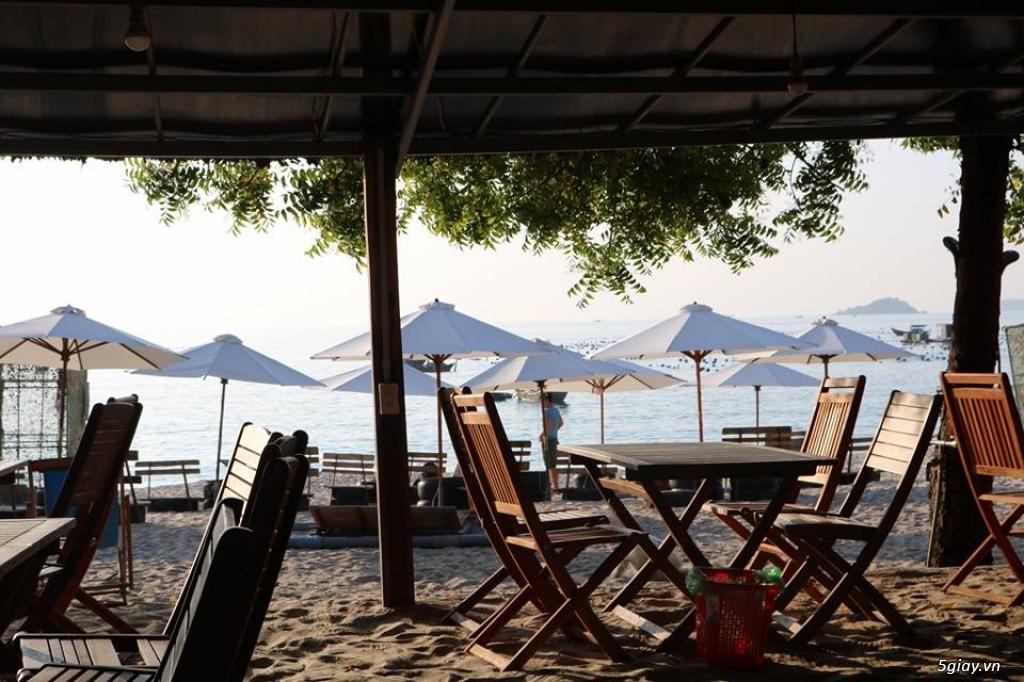Villa Đảo Hoa Vàng và các tour lặn san hô ở Bình Lập - 8