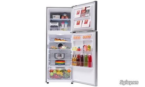 Tủ lạnh Samsung 299 lít RT29K5532UT/SV