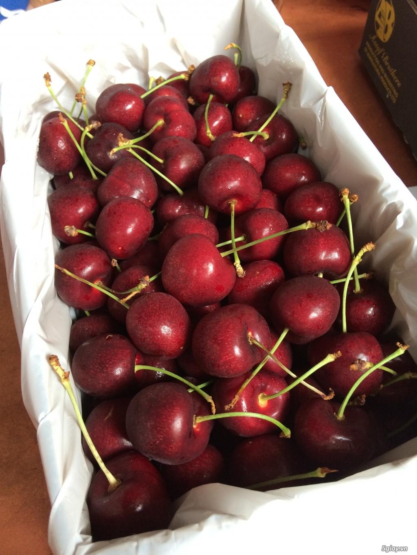 Cung cấp sỉ & lẻ Cherry đỏ nhập khẩu từ Canada