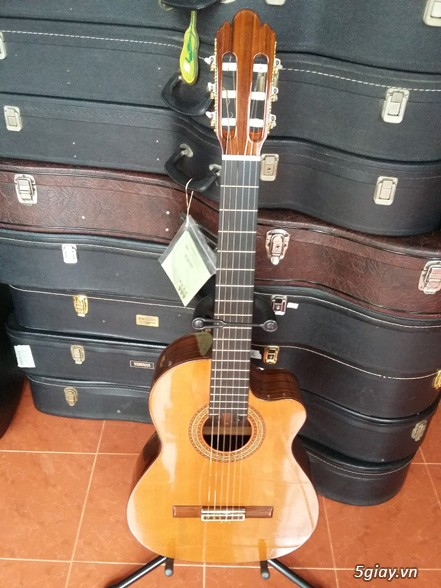 Guitar Tây Ban Nha