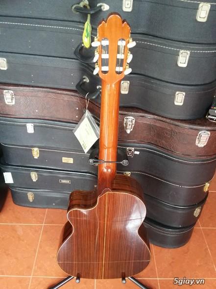 Guitar Tây Ban Nha - 3
