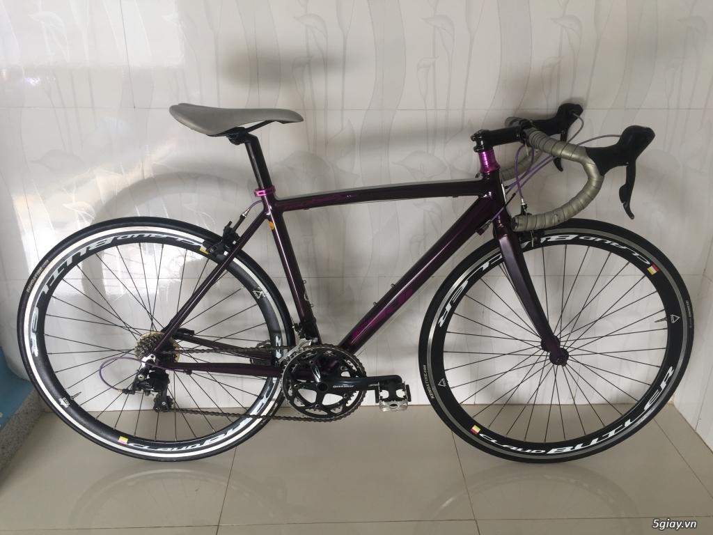 Xe đạp thể thao made in japan,các loại Touring, MTB... - 38