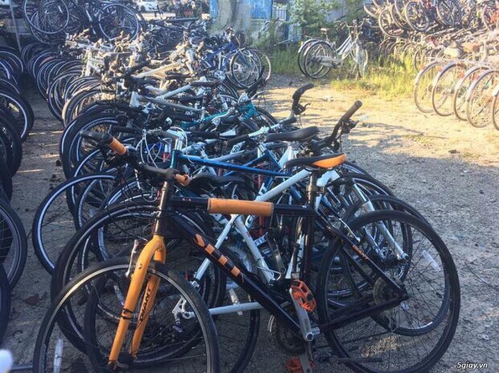 Xe đạp thể thao made in japan,các loại Touring, MTB... - 10