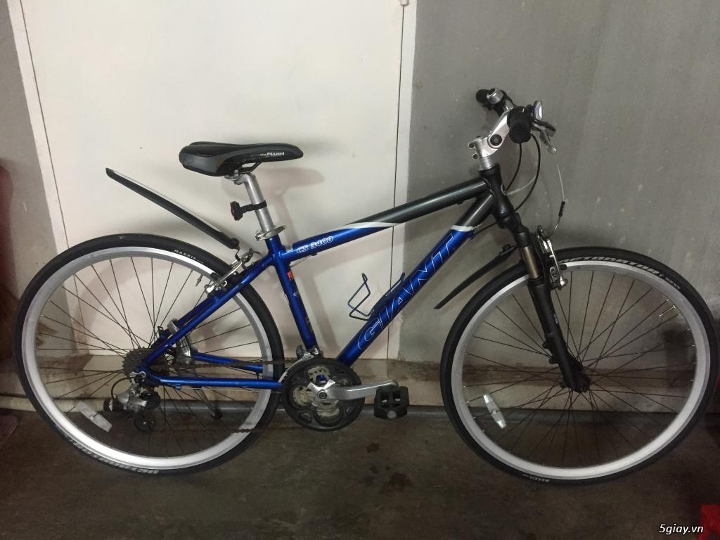 Xe đạp thể thao made in japan,các loại Touring, MTB... - 26