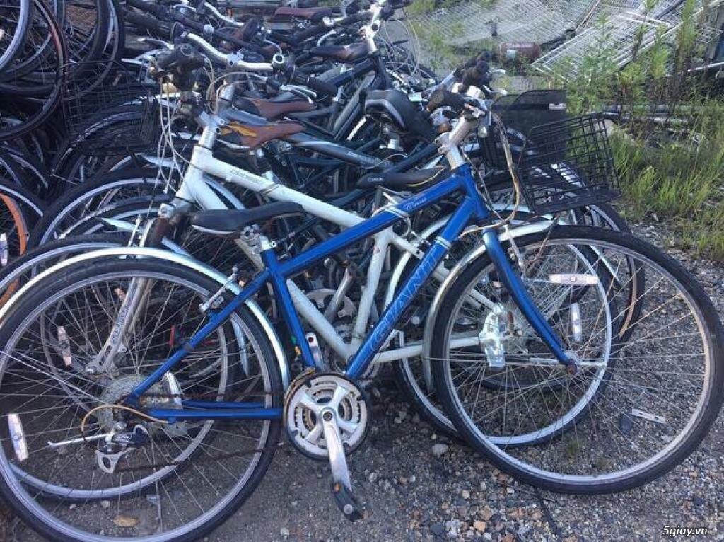 Xe đạp thể thao made in japan,các loại Touring, MTB... - 18